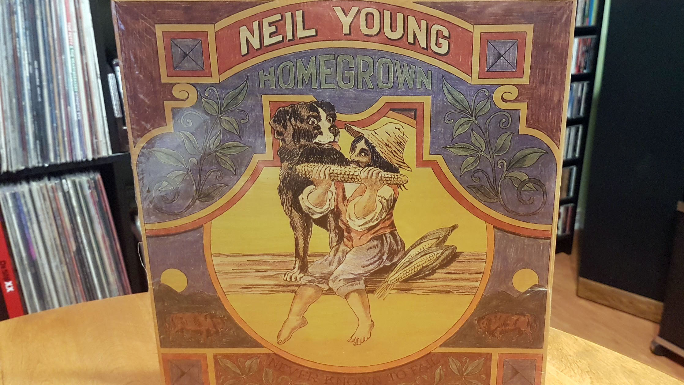 Neil Young homegrown front